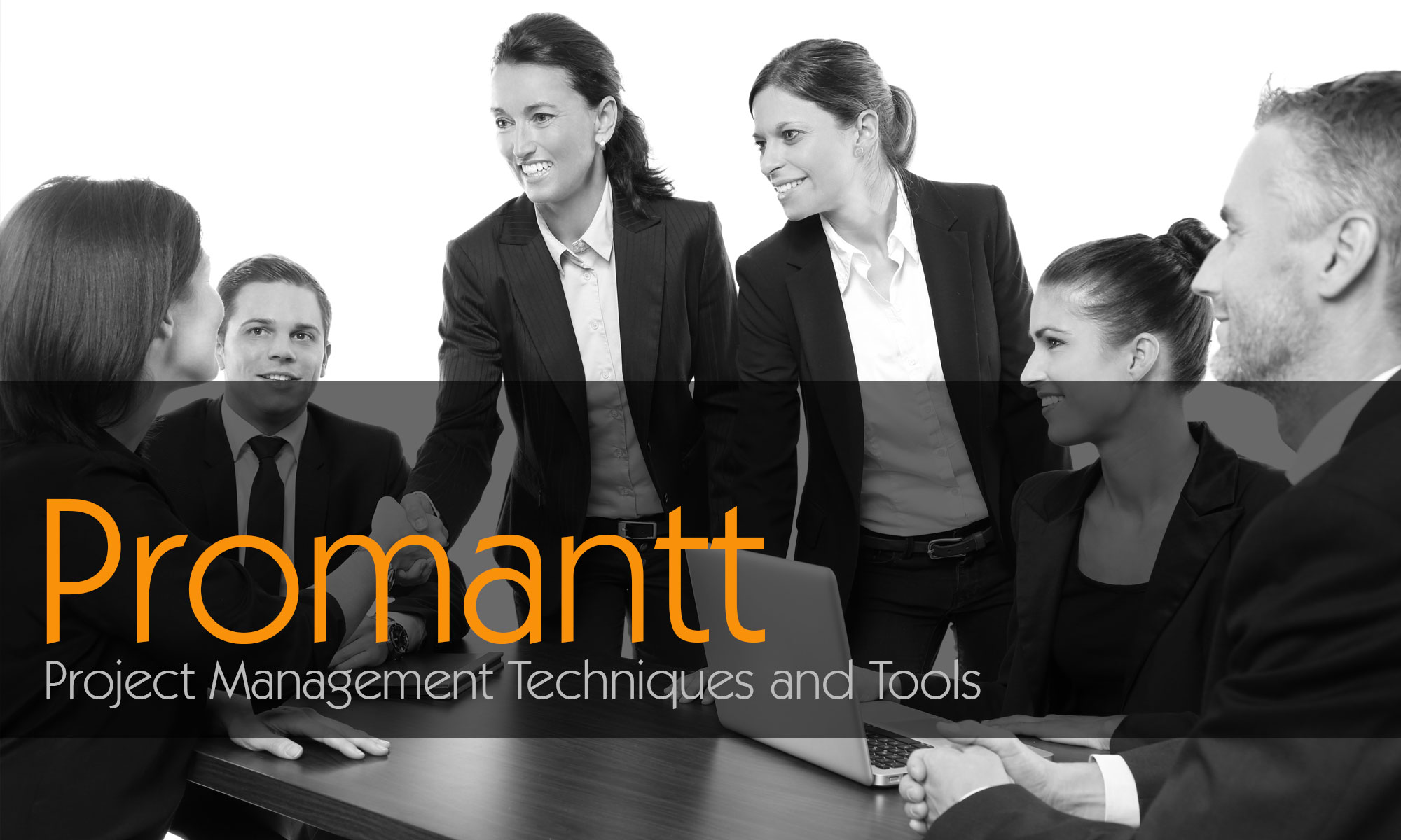 3 day cert iv diploma of project management promantt promantt promantt project management xflitez Image collections